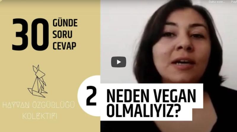 Neden Vegan Olmalıyız?