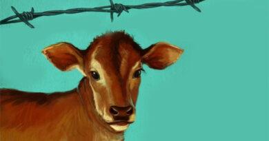 Marksizm ve Hayvan Özgürleşmesi Üzerine 18 Tez